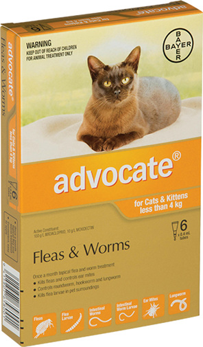 Advocate® Flea and Worm Treatment for Cats & Kittens less than 4kg, 3 or 6 pack