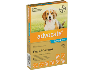Advocate® Flea and Worm Treatment for Dogs 4-10kg,  3 pack