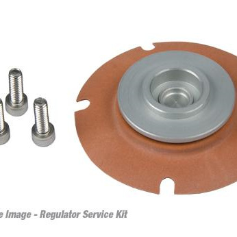 Aeromotive Regulator Service Kit 13006