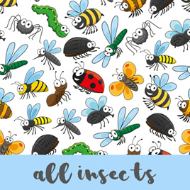 All Insects