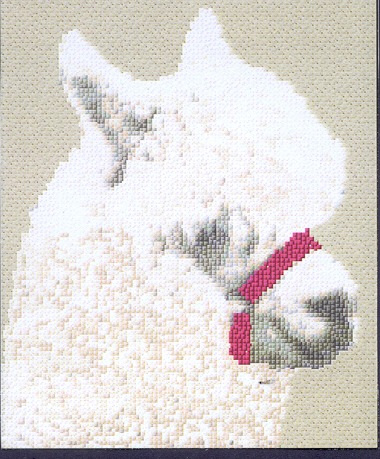 Alpaca Cross Stitch Pack