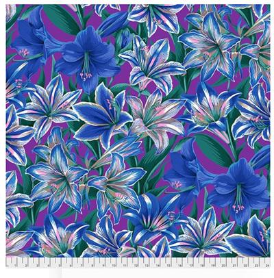 Amaryllis Blue PWPJ104122