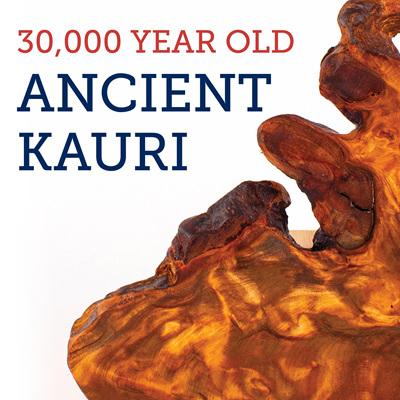 Ancient Kauri