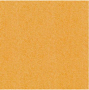 Animal Crackers Numbers Tangerine 5809-14