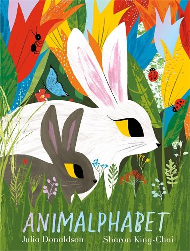 Animalphabet (PRE-ORDER ONLY)