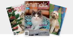 Animals' Voice Magazine - 12 month subscription