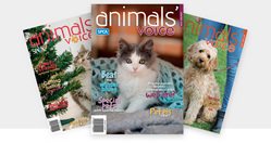 Animals' Voice Magazine - 24 month subscription