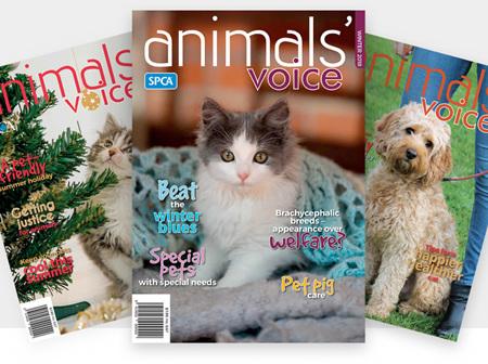 Animals' Voice Magazine Subscriptions