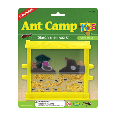 Ant Camp