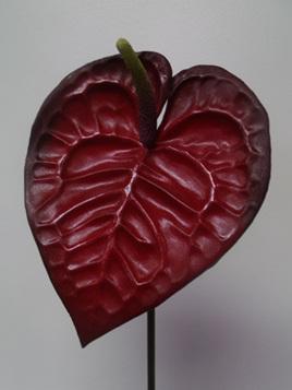 Anthurium - Dark red 1030