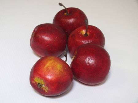 Apple mini red 1289