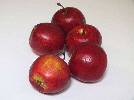Apple mini red 1289