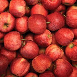 Apples  NZ Gala Certified Organic Approx 1kg