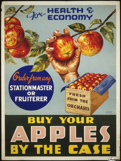 Apples- Tin Sign