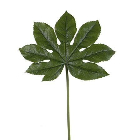 Aralia leaf 4028