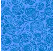 Arcadia - Ammonites - Ocean