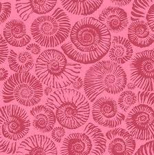 Arcadia - Ammonites - Pink