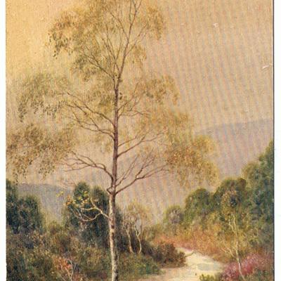 Art Colour postcards