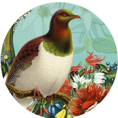 Art Spot Decal - Kereru Wood Pidgeon