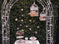 artificial ivy wall wedding and event hire timaru