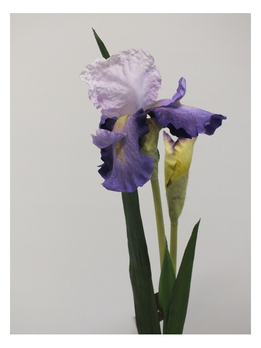 #artificialflowers #fakeflowers #decorflowers #fauxflowers#mauve#iris#silk
