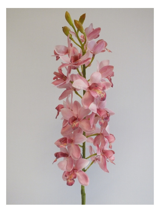 #artificialflowers #fakeflowers #decorflowers #fauxflowers#silk#orchid#pink#