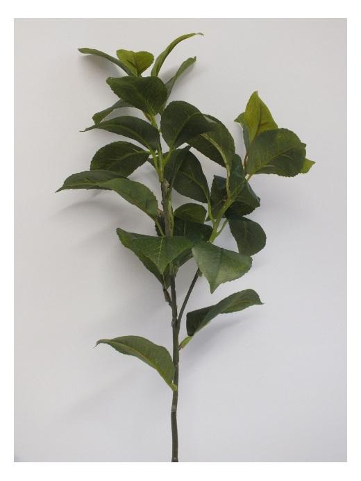 #artificialflowers #fakeflowers #decorflowers #fauxflowers#camelia spray