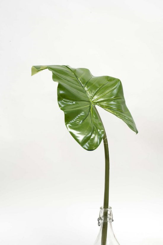 #artificialflowers #fakeflowers #decorflowers #fauxflowers#greenery#philodenrun#