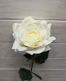 Rose Full Bloom Cream 4408