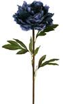 Peony Stem Blue 1869