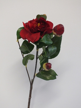 Camellia Branch with red flowers 1993