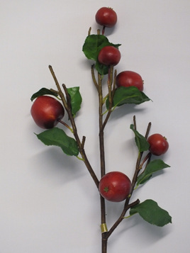 Apple branch 4276