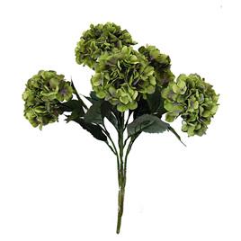 Hydrangea Bush Green and Lavender 1915