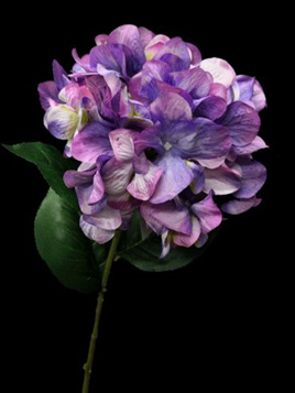 Hydrangea Light Purple 4170
