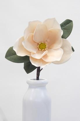 Magnolia Vintage Cream 1979