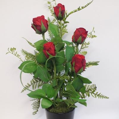 Love Blooms 2163