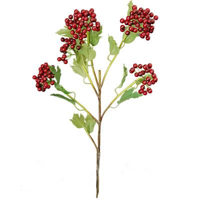 Berry woodland 1498 1