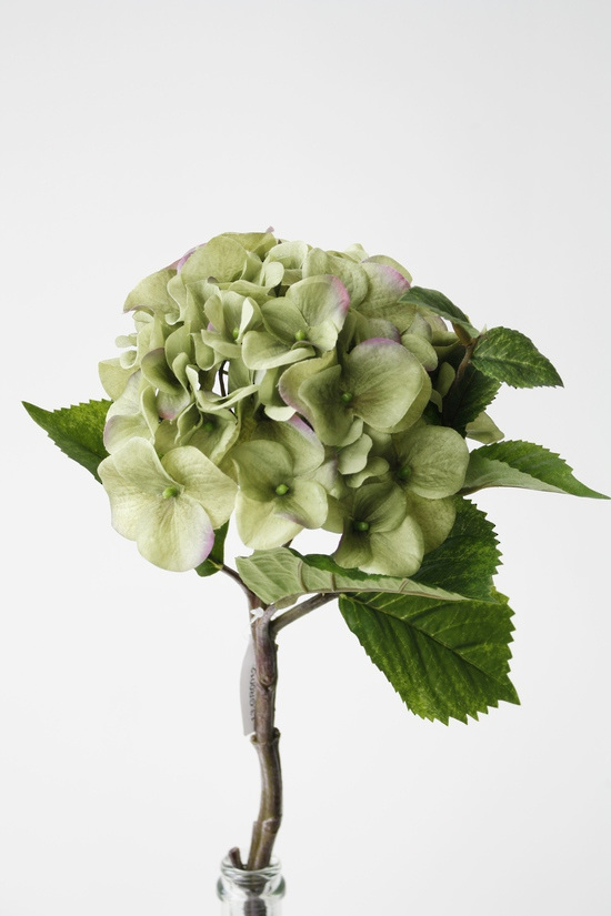 #artificialflowers #fakeflowers #decorflowers #fauxflowers#hydrangea#green#