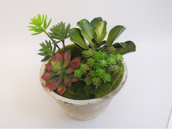 #artificialflowers #fakeflowers #decorflowers #fauxflowers #succulents