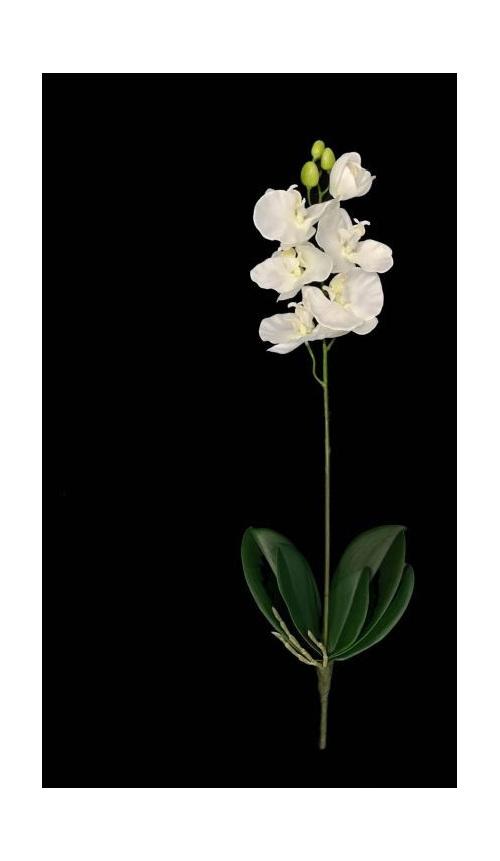#artificialflowers #fakeflowers #decorflowers #fauxflowers#orchid