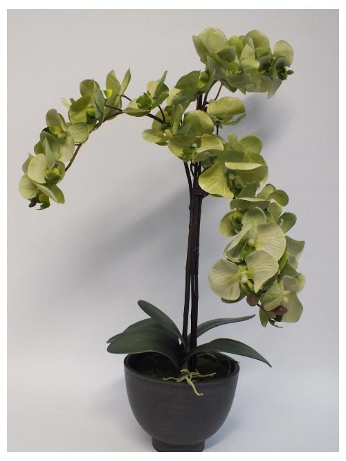 #artificialflowers #fakeflowers #decorflowers #fauxflowers#silk#orchid#green