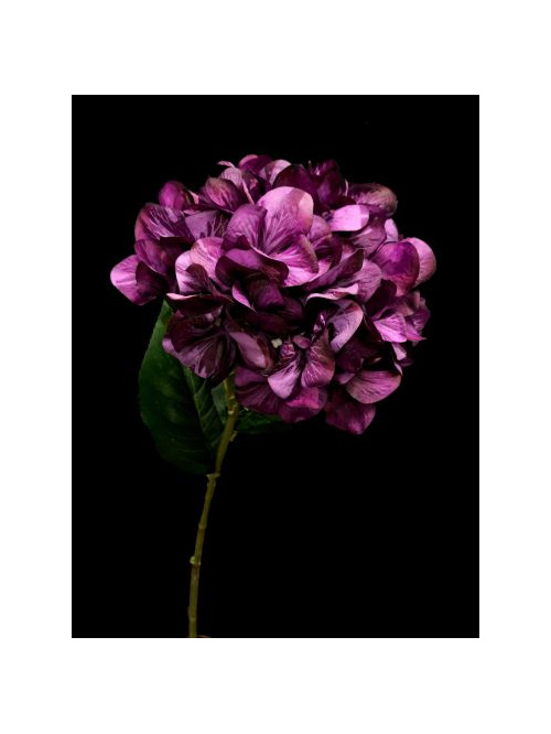 #artificialflowers #fakeflowers #decorflowers #fauxflowers#darkmauve#silk#hydran