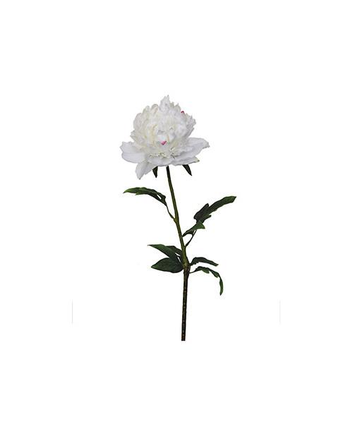 #artificialflowers #fakeflowers #decorflowers #fauxflowers#white#peony
