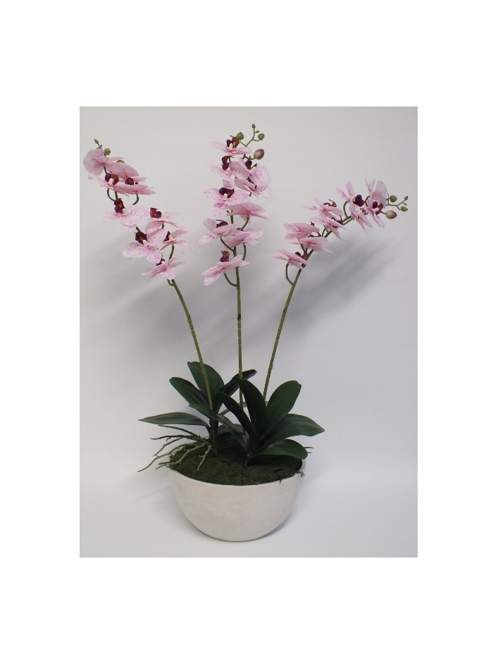 #artificialflowers #fakeflowers #decorflowers #fauxflowers#silk#orchid