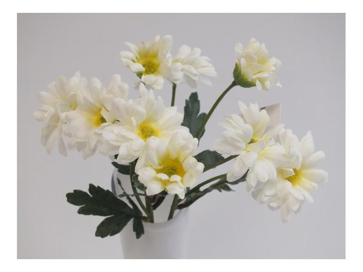 #artificialflowers #fakeflowers #decorflowers #fauxflowers#daisy#white#