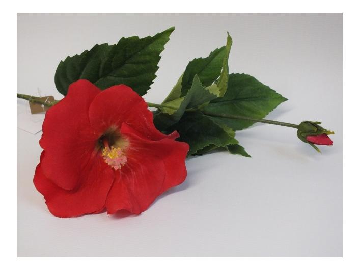 #artificialflowers #fakeflowers #decorflowers #fauxflowers#silk#hibiscus#red