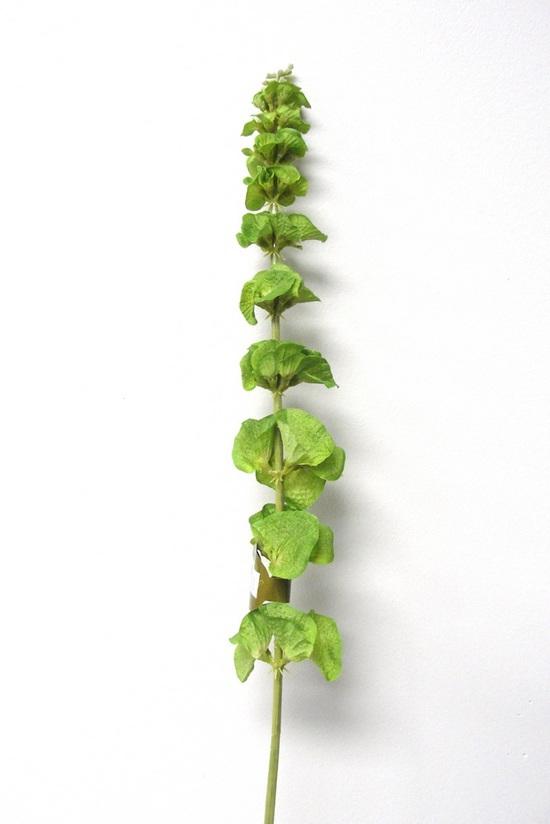 #artificialflowers #fakeflowers #decorflowers #fauxflowers#BellsofIreland