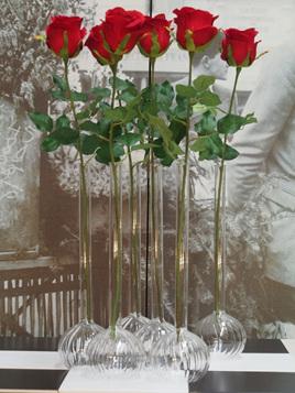 Rose red - 1927