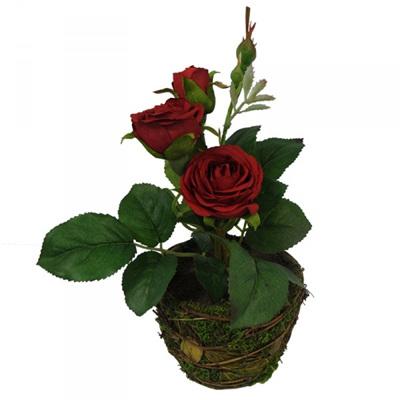 Mini Rose Beauty 1478
