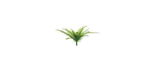 #artificialflowers #fakeflowers #decorflowers #fauxflowers #fernbush
